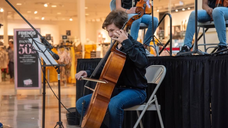 Cello Lessons in Miami